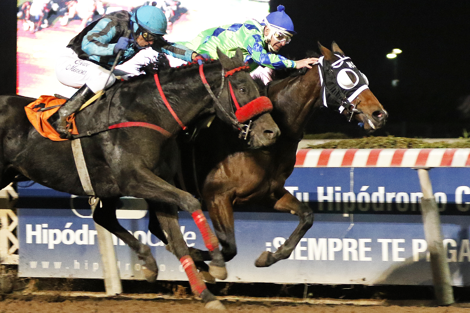 Cherokee Queen (Bluegrass Cat) se lleva Handicap (1000m-Arena-HCH).